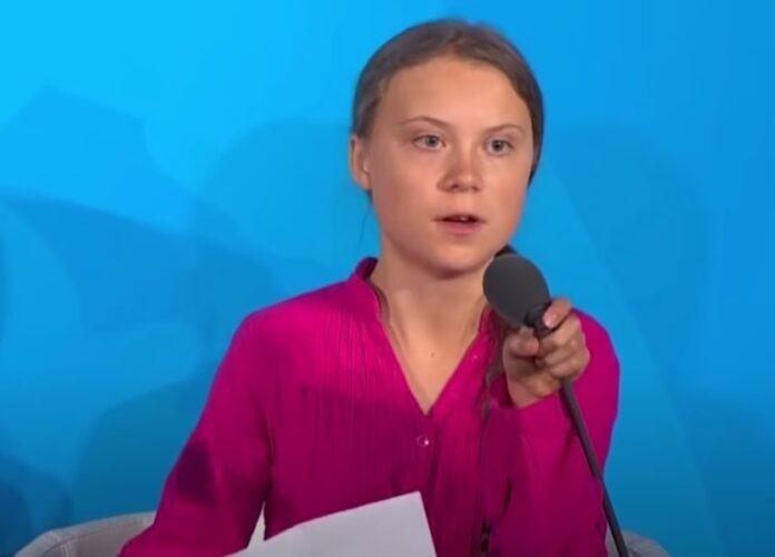 Attivista teenager