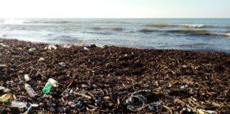 Ansia da cambiamenti ambientali