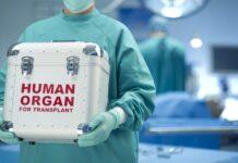 Pazienti in attesa di trapianto e donazione di organi- articolo di Loredana Carena-