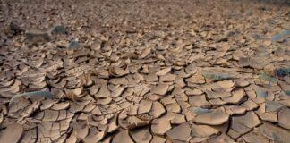 Carestia in Yemen