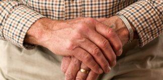 correlazione tra salute intestinale e Alzheimer