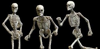 curare le ossa