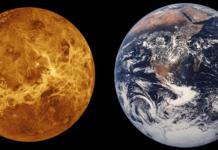 Venere: una volta era come la Terra