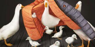 Save The Duck, azienda animal free, articolo di Loredana Carena