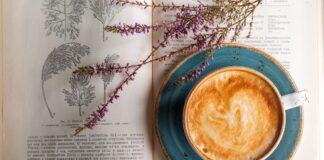 Il fascino dei caffè
