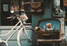 Il futuro in bicicletta