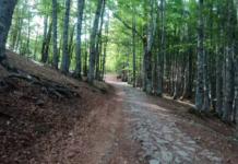 Gli italiani e il trekking
