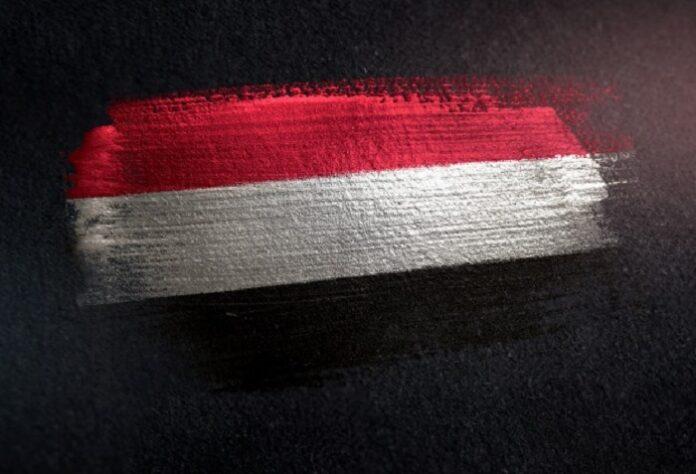Houthi dello Yemen