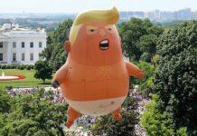 Baby Trump