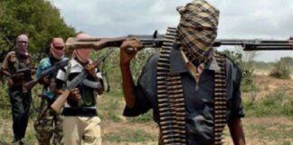 Camerun: Boko Haram
