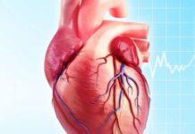 Denervazione cardiaca
