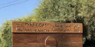Spiagge Libano disastro ambientale