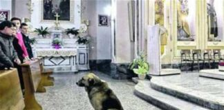 Entra in chiesa col cane 45enne