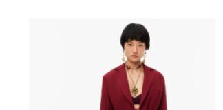 Nuova collezione Zara