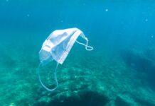 Biodiversità degli oceani