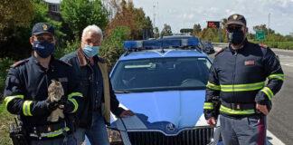 Poliziotti salvano piccolo Gufo