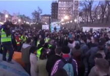 Proteste pro Navalny
