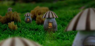 The Mushroom