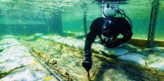 Archeologia subacquea e la scoperta di antichi tesori sommersi, (articolo di Loredana Carena)