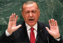 Erdoğan contro Israele