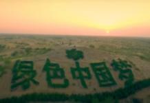 Economia sempre più green per la Cina