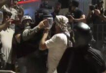 manifestanti pro palestina