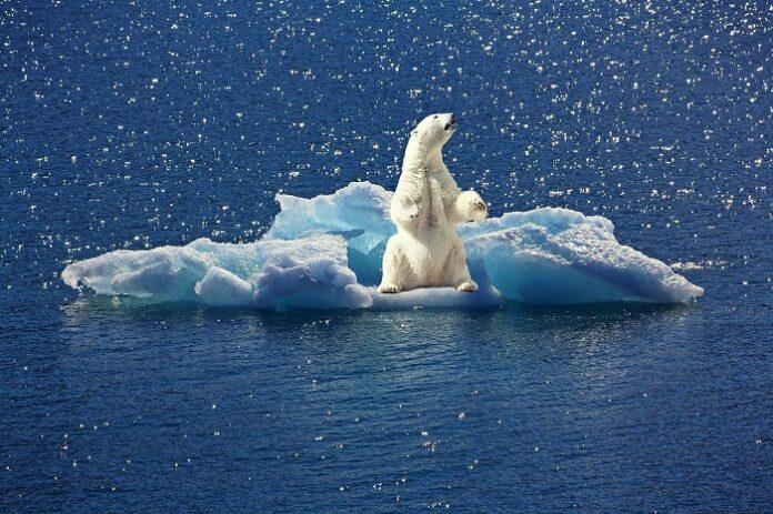 Obiettivi climatici