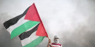 proteste pro palestina