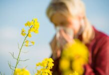 allergia primaverile
