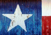 Il Texas costruirà il proprio muro al confine
