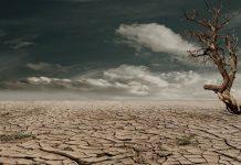 Il deserto della preghiera