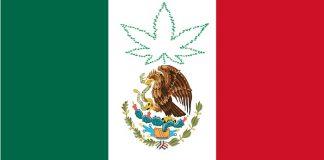 Messico: Corte Suprema depenalizza la marijuana ricreativa