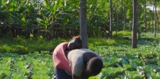 Uganda l'innovazione agricola