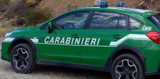 I Carabinieri della Forestale