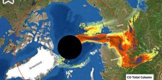 Brucia la Siberia