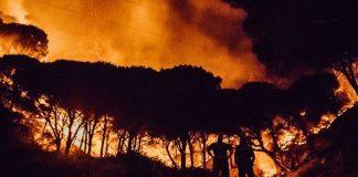 Italia brucia