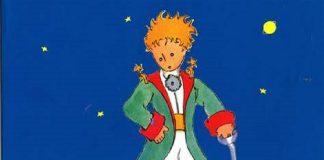 """Bourdaisière """"Il piccolo principe"""""""