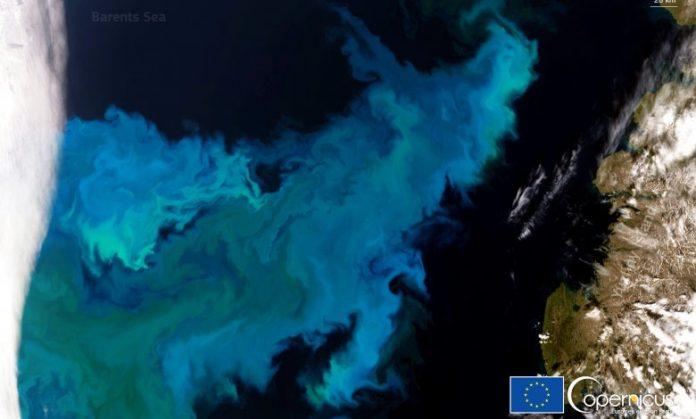 Livello di mari e oceani