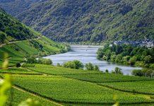 Moselle Sud