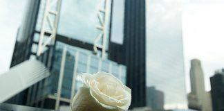 Obama riflette sul 20° anniversario dell'11 settembre