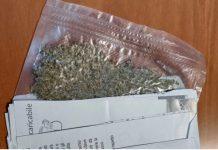 Invia marijuana
