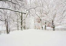 Meteo invernale e neve